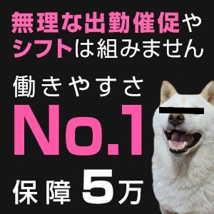 bana13